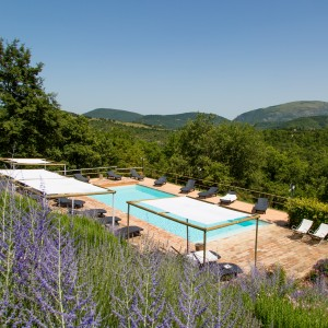 Offerta last minute estate in Umbria!